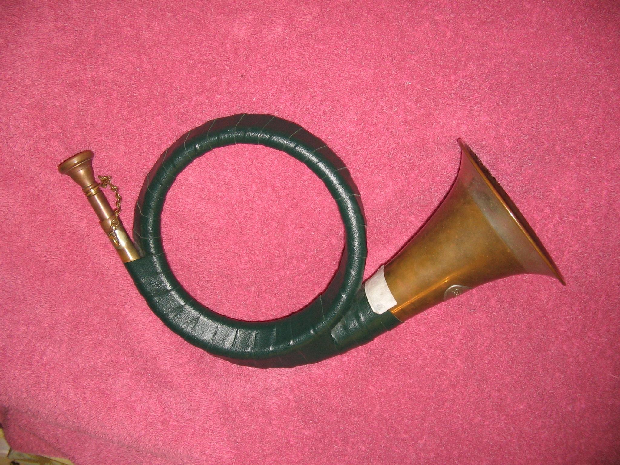 Furst Pless Horn 001.JPG